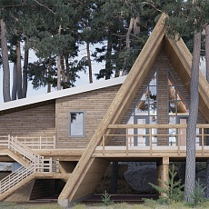 Проект «Дом на дереве»